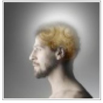 Gene IMAGE Human Spirit