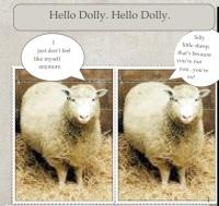 Hello jpg Dolly