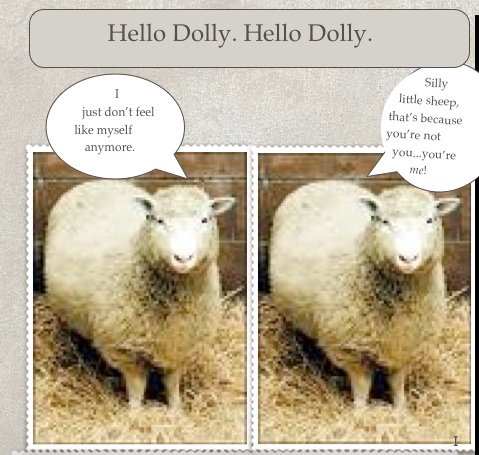 Hello jpg Dolly